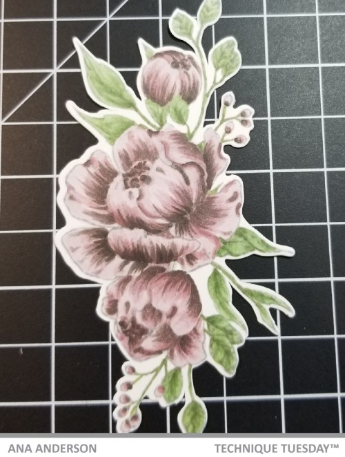 Fresh-Peonies-TT-March-2019- Ana A3