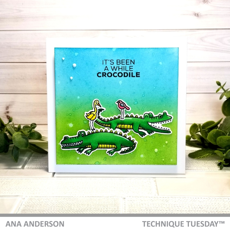 TT May Alligators and crocodiles7.jpg