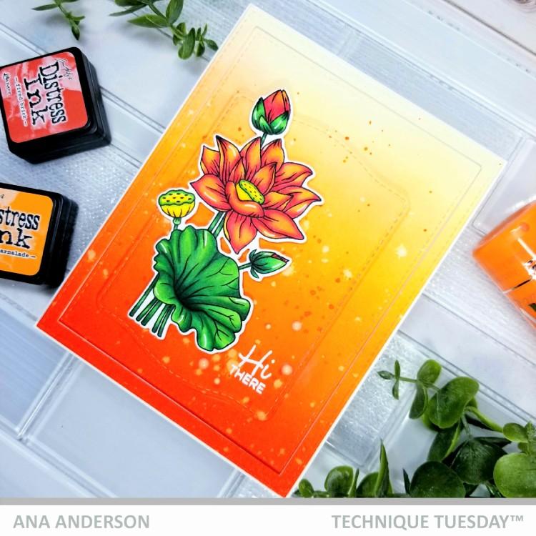 Ana A Lotus 1b