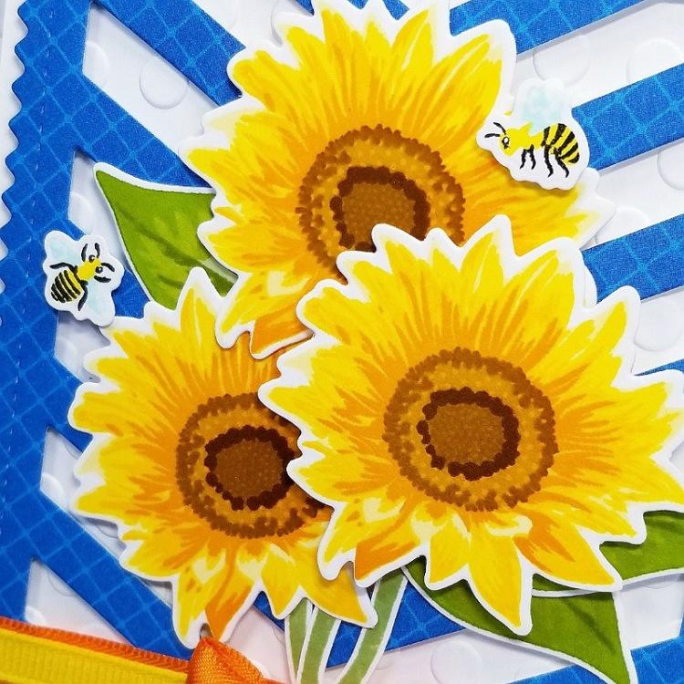 Ana A Sunflower Fields 1b.jpg
