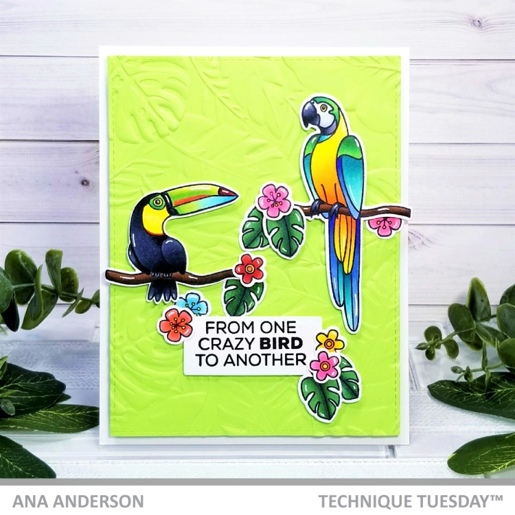 Ana A -Tommy and Polly the Tropical Birds1