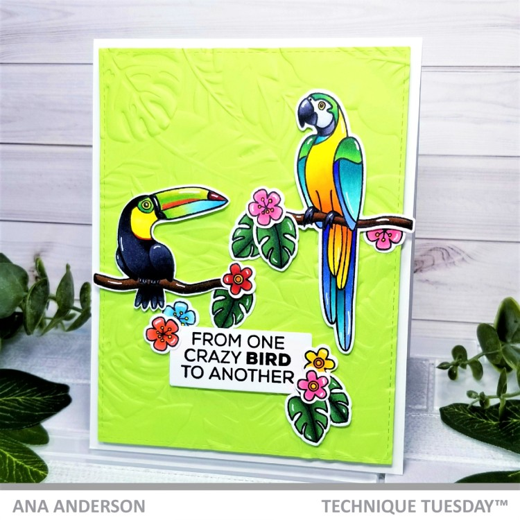 Ana A -Tommy and Polly the Tropical Birds1c
