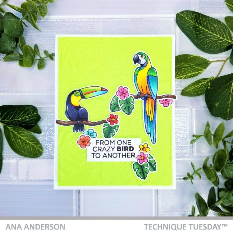 Ana A -Tommy and Polly the Tropical Birds1d