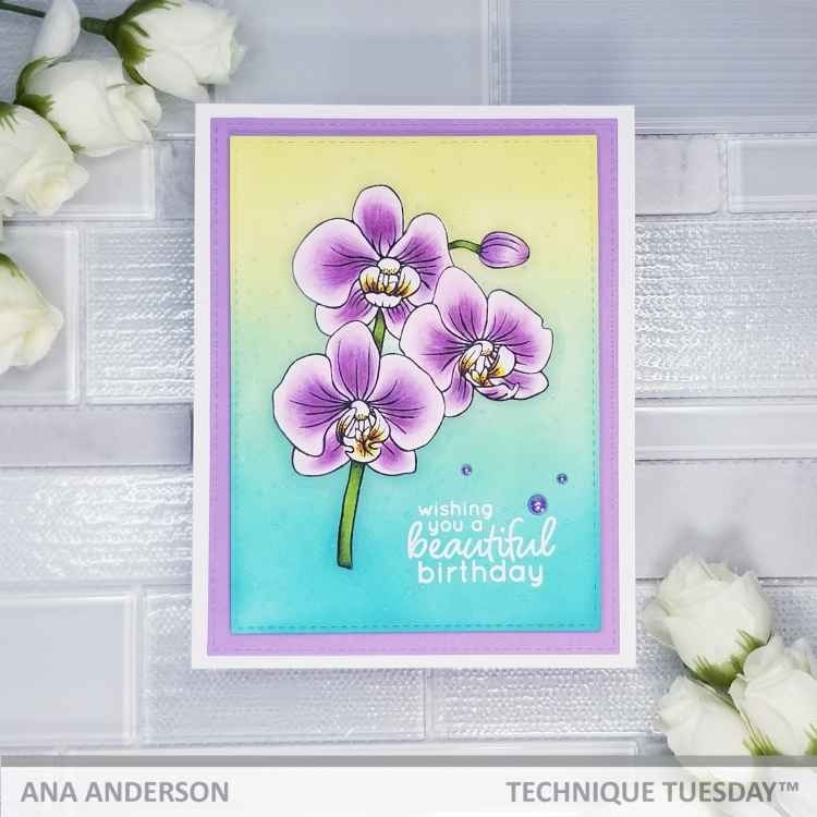Ana A - Alluring Orchid2